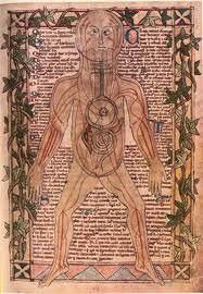 Medieval anatomy & body
