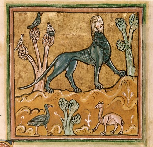 Detail of a miniature of a manticore, a creature with the body of a lion, the head of a man, and the tail of a scorpion - Image from British Library Royal 12 F.XIII, f.24v