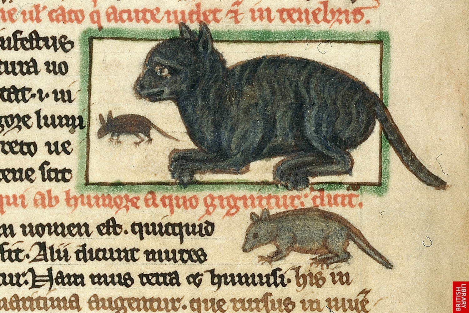 Image result for witches cats medieval