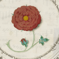 Roses in the Middle Ages