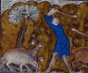 Medieval Pigs