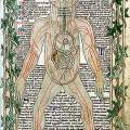 The Cyrurgia of Albucasis and other works, 1500