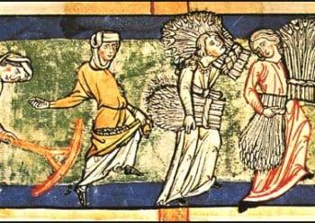 Medieval harvest