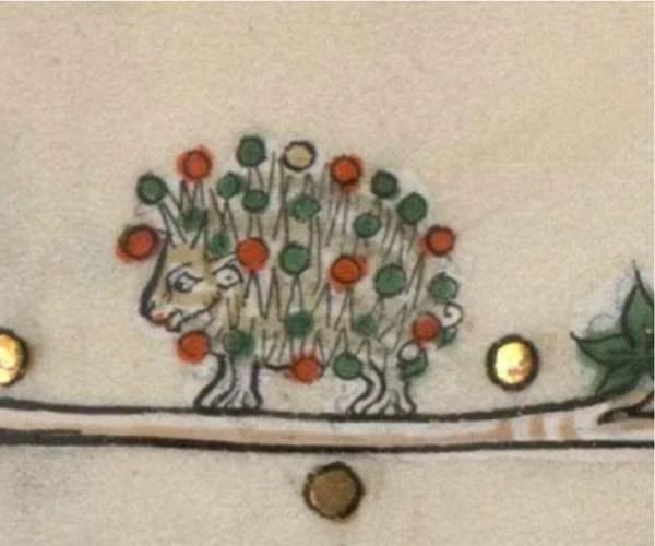 medieval porcupine