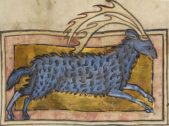 Parandrus - from British Library MS Royal MS 12 C XIX;