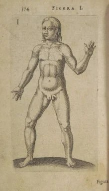 Medieval depiction of a hermaphrodite (courtesy of Cornell University Library).
