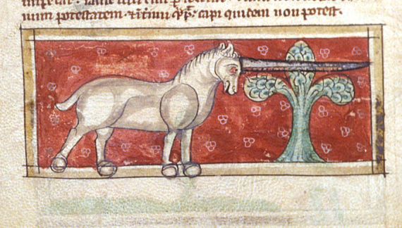 Monoceros - from British Library MS Sloane 3544   f. 9v