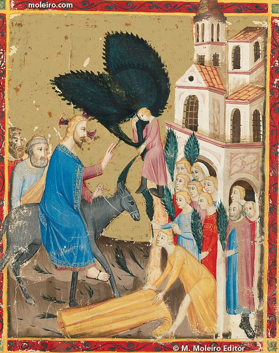 Palm Sunday In Medieval Manuscripts Medievalists Net