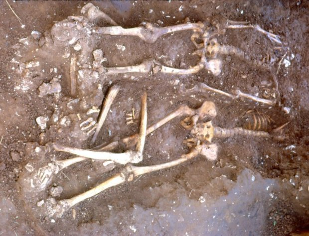 Skeletons under excavation at Walkington Wold - photo by Rod Mackey