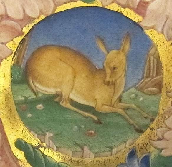 medieval deer
