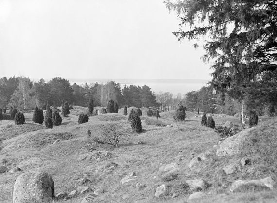 Viking Age grave field south of Borg (the Viking Stronghold) at Birka archaeological site on Björkö island in Lake Mälaren. Viking Age Birka and Hovgården from the from the 8th to 10th century is today a UNESCO World Heritage. Photo by Harald Faith-Ell, taken in 1926