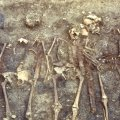 Genetic secrets of early medieval warriors revealed from German burial site