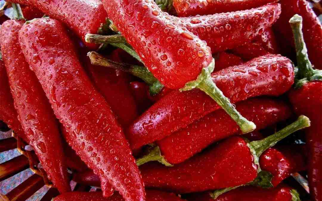 People Eating a Lot of Hot Chilli Peppers Might Live Longer