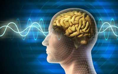 The Same Area of the Brain is Responsible for Stress and Heart Attack