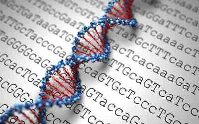 Two-Thirds of Cancers Happen Due to Random DNA Copying Errors and Cannot Be Avoided