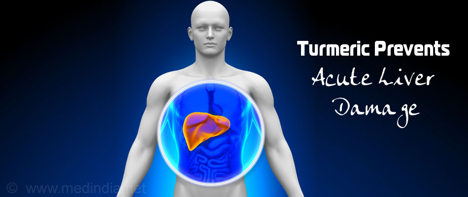 Curcumin Helps Prevent Liver Damage
