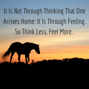 it-is-not-through-thinking-that-one-arrives-home-it-is-through-feeling-so-think-less-feel-more-1