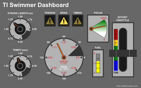 TI Swimmer Dashboard