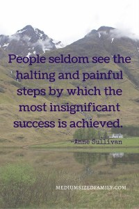 People seldom see the halting and painful steps by which the most insignificant success is achieved.