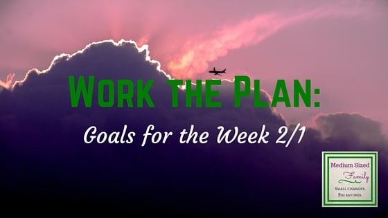 Work the Plan: Goals for the Week 2/1