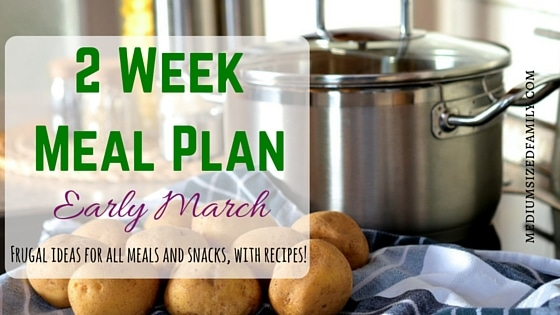 2 Week Meal Plan for Early March