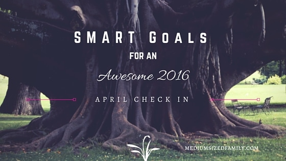 My S.M.A.R.T. Yearly Goals – April Check In