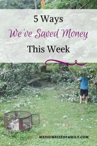 5 Ways We've Saved Money This Week 40 Looking for money saving tips? Here are the latest ways to save money that our family is using to dig out of debt.