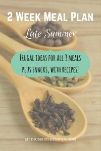 2 Week Meal Plan for Late Summer. Looking for a meal plan that can cover 2 weeks worth of meals and snacks? Here's a summer menu.
