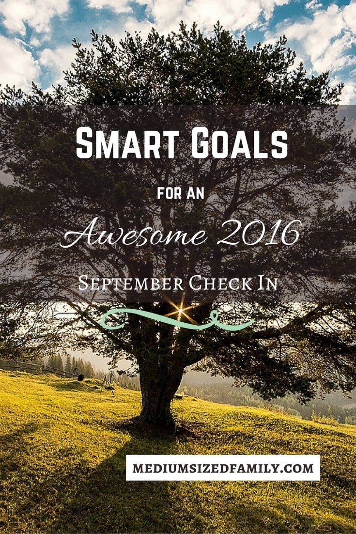 Smart Goals September Check In. Have you kept up with your goals for the year? It's important to review your goals to keep yourself on the right track. Here's our update.