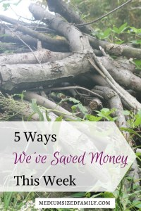 5 Ways We've Saved Money This Week 54. This family is one week closer to being debt free, thanks to all of the little ways they've saved money. Steal some of these ideas for your own family!
