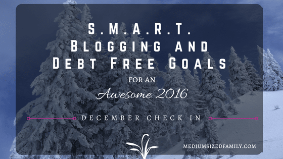 My S.M.A.R.T. Blogging & Debt Free Goals: December Check In