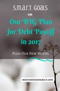 S.M.A.R.T. Goals and Our BIG Plan for Debt Payoff in 2017 SMART goals are so important. Last year, we were able to pay off thousands in debt due to setting big goals. See what our goals are for this year, and join in for accountability.