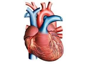 Causes cardiaques des embolies