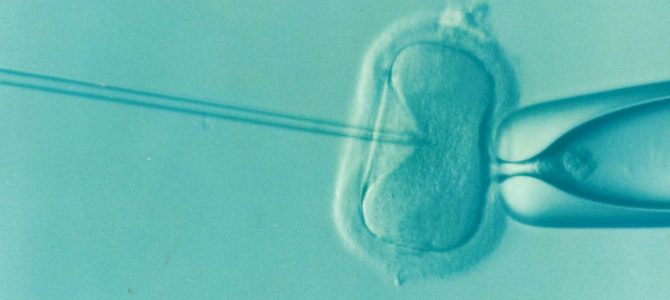 Embryos on the Move: Transnational Networks of Surrogacy