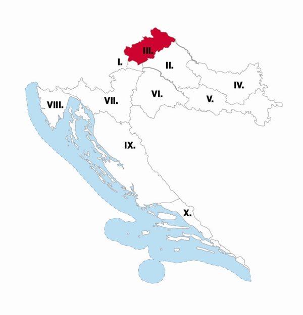 III izborna jedinica