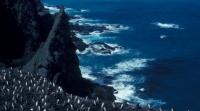 dio Antarktičkog oceana postaje najveće morsko zaštićeno područje