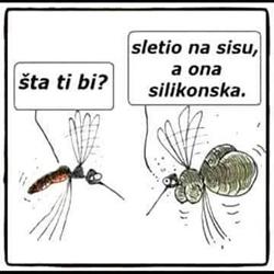 silikoni