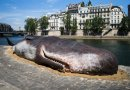 kit na Seini