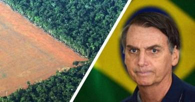 Brazilski predsjednik želi iskrčiti prašume Amazone i dati korporacijama da grade nebodere