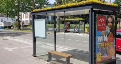 U Nizozemskoj na autobusne stanice postavljaju zelene krovove za biljke i pčele