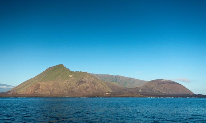 Galapagos: Na vulkanu Isabela tkrivene dvije nove vrste guštera gekona
