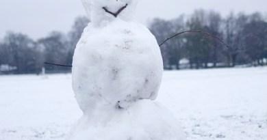 Noćas je pao snijeg - dnevnik o rasizmu jednog snjegovića
