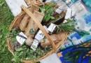 Slow Food na djelu: mladi i budućnost prehrambenog sustava u Hrvatskoj