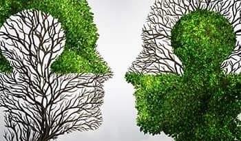 Obnovimo našu Zemlju – Restore Our Earth