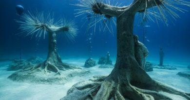 Otvorena jedinstvena šuma na dnu Mediterana i muzej podvodnih skulptura
