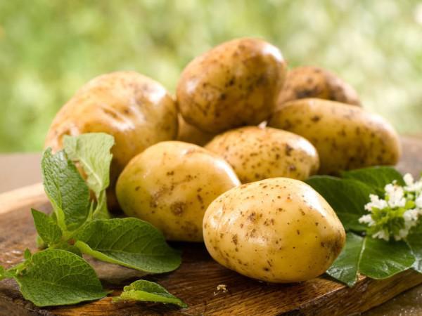 Свежие цветки картофеля
