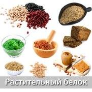 Белок (протеин)