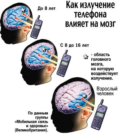 Механизм воздействия сотового на организм человека