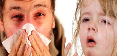 """Проявления """"сенной лихорадки"""" у детей и взрослых, фото"""
