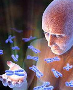 бактерии и человек